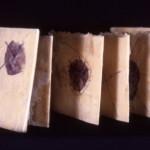 SaraMinarikApplegate_HandmadeBooks (7)
